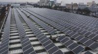 AFRIQUE DU SUD : Sola Group fournira 8,7 MWc de solaire aux brasseries d'Anheuser©Anze Furlan/Shutterstock