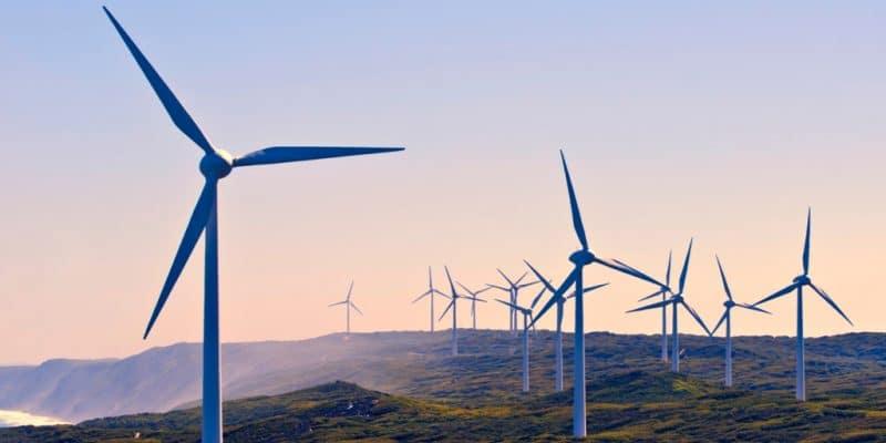 AFRIQUE DU SUD : le gouvernement approuve le très contesté projet éolien de Boulders ©imagevixen/Shutterstock