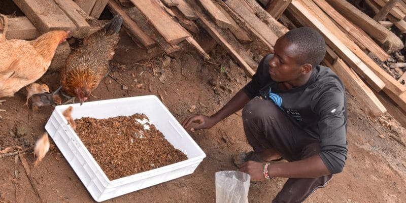 KENYA: GreenTec invests in waste recovery start-up Ecodudu©de Ecodudu