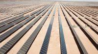 AFRIQUE DU SUD : Scatec Solar connecte la centrale solaire de Sirius de 86 MWc©Scatec Solar
