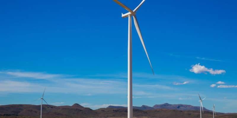 SÉNÉGAL : le gouvernement inaugure la première phase du parc éolien de Taïbe Ndiaye©Kate33/Shutterstock