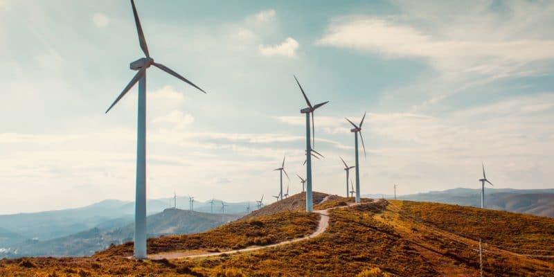 DJIBOUTI : le projet éolien de Ghoubet (60 MW) entre dans sa phase de construction