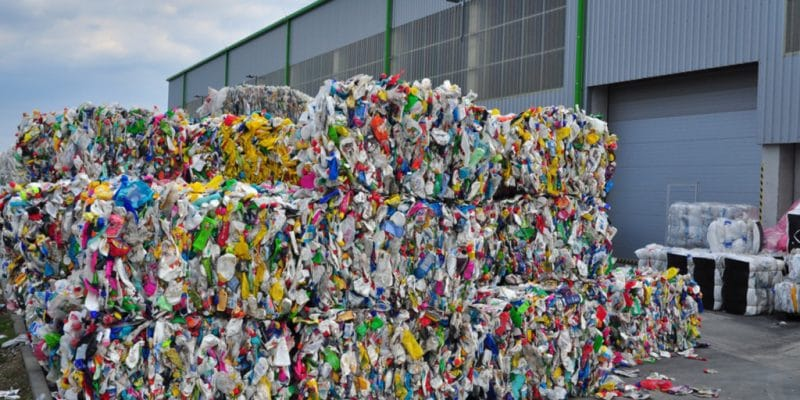 EGYPT: Henkel joins forces with Plastic Bank to recover plastic waste