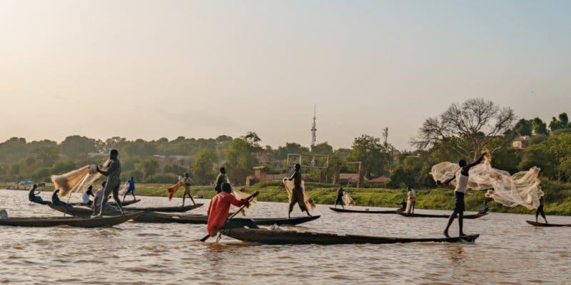 MALI : lancement d'un projet de protection de l'environnement dans le bassin du Niger©Catay/Shutterstock