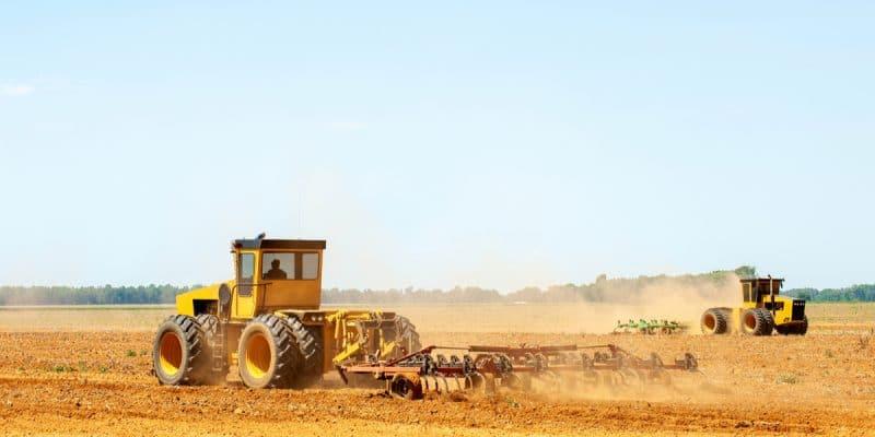 MADAGASCAR: NGOs oppose transfer of 60,000 ha of land to Elite Agro LLC©Catchlight Lens/Shutterstock