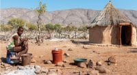 NAMIBIA: Effects of drought lead to food shortages for nearly 350,000 people©marcobriviodeShutterstock