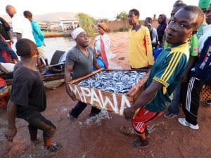 EASTERN AFRICA: Lake Victoria clean-up programme underway