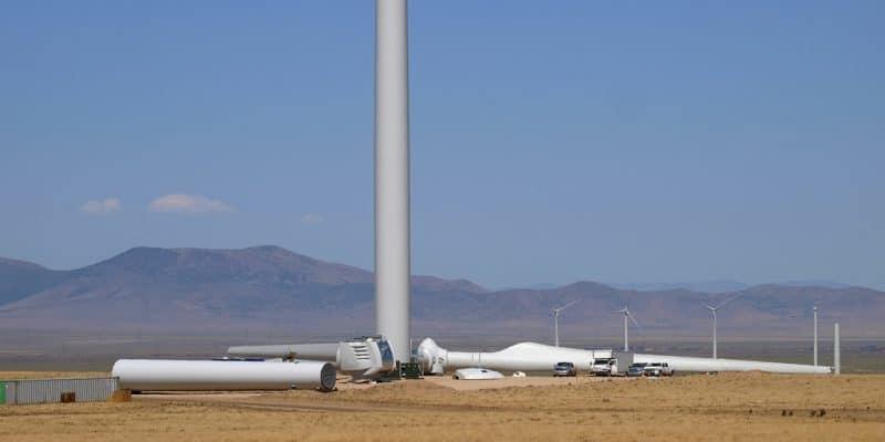 ÉGYPTE : Lekela lance la construction de son parc éolien de West Bakr à Ras Ghareb©Chris H. Galbraith/Shutterstock