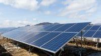 NAMIBIE : la région de Kunene s'enrichit d'une centrale solaire de 150 kWc©leungchopan de Shutterstock