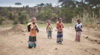 AFRIQUE : la dégradation de l'environnement compromettrait la santé des enfants©Sadik Gulec/Shutterstock