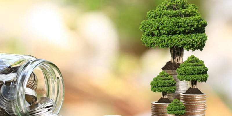 NIGERIA: To launch 3rd Green Bond to fund several eco-friendly projects©Monthira/Shutterstock