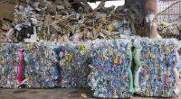 KENYA : Unilever sort un emballage plastique recyclable à 100 % en Afrique de l'Est©MR.Yanukit de Shutterstock
