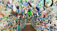 SEYCHELLES: Plastic arch to raise awareness of ocean pollution©/Ocean Project Seychelles