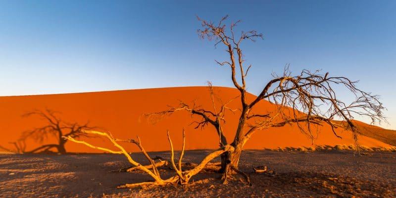 AFRICA: EU strengthens cooperation to combat climate change©Jixin YU/Shutterstock