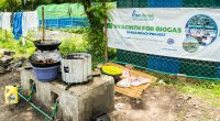 MALAWI: 2 million improved stoves by 2020 for biogas cooking©space_krill/Shutterstock