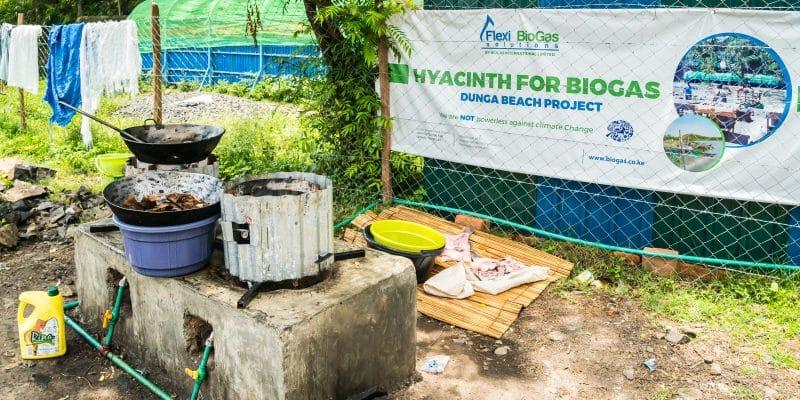 MALAWI : 2 millions de fourneaux améliorés d'ici à 2020 pour la cuisson au biogaz©space_krill/Shutterstock