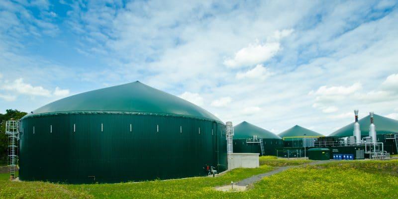 CAMEROUN : Hysacam va bientôt produire l'électricité à partir des déchets ménagers©Konmac/Shutterstock