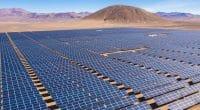 LIBYE : le gouvernement lance la construction d'une centrale solaire à Kufra ©Abrien Domundo/Shutterstock