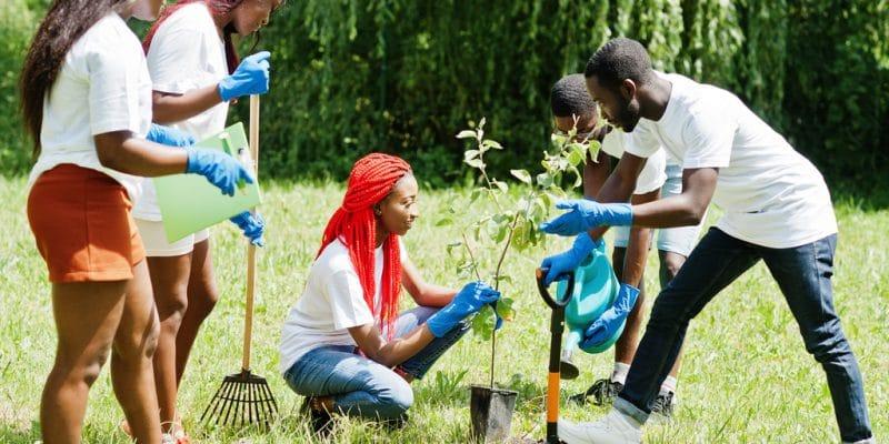 MADAGASCAR : pour ses 60 ans d'indépendance, l'État plante 60 millions d'arbres©AS photo studio/Shutterstock