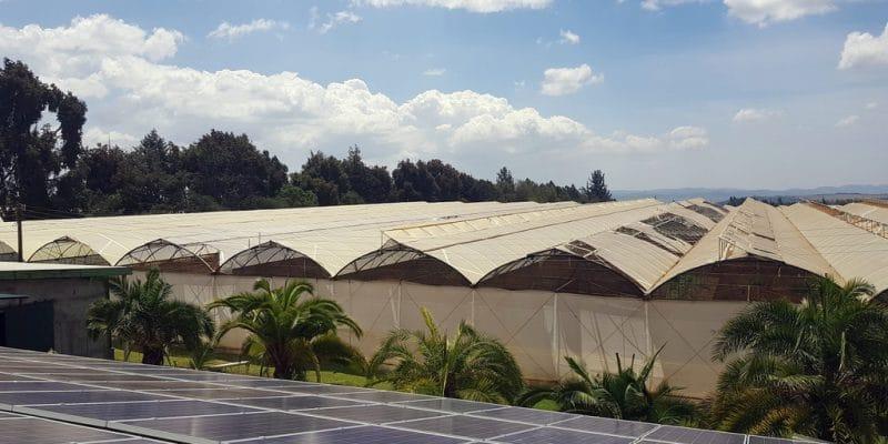 AFRICA: Persistent Energy raises $8 million to provide solar off-grid©Lidia Daskalova/Shutterstock