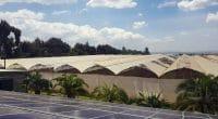 AFRIQUE : Persistent Energy lève 8 M$ pour fournir l'off-grid solaire©Lidia Daskalova/Shutterstock