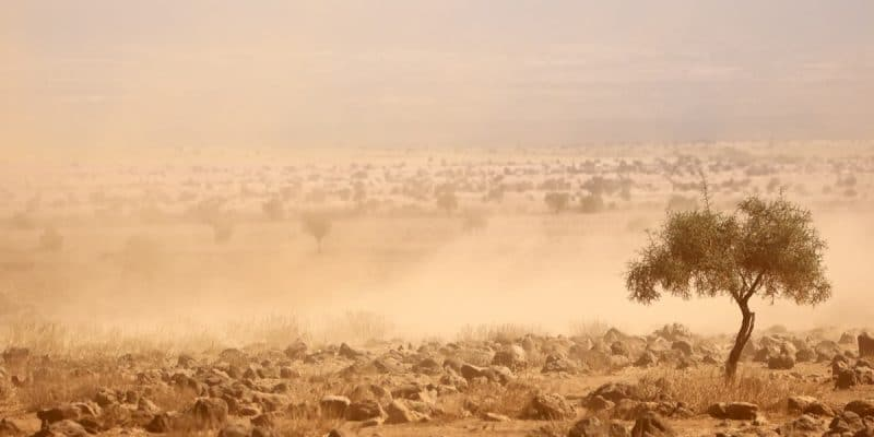 MALI: World Bank grants €29 million for climate resilience project©EcoPrint/Shutterstock