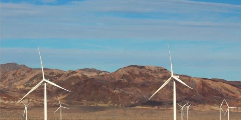 NAMIBIE : le gouvernement approuve 4 projets éoliens dans le parc de Tsau//Khaeb©DCornelius/Shutterstock