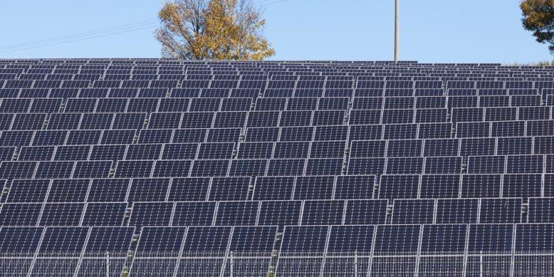TCHAD : la STE se dote d'une centrale solaire photovoltaïque pour son agence à l'est©moglimoglzahn/Shutterstock
