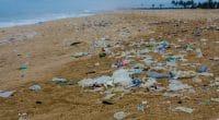 SÉNÉGAL : le Covid-19 «contamine» la loi anti-plastique© Neja Hrovat/Shutterstock