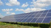 AFRIQUE : l'Irena et l'UA poussent les énergies renouvelables, en réponse au Covid-19©Radovan1 / Shutterstock