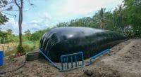 GHANA : lancement d'un projet de renforcement des capacités sur le biogaz ©Thatsanaphong Chanwarin/Shutterstock