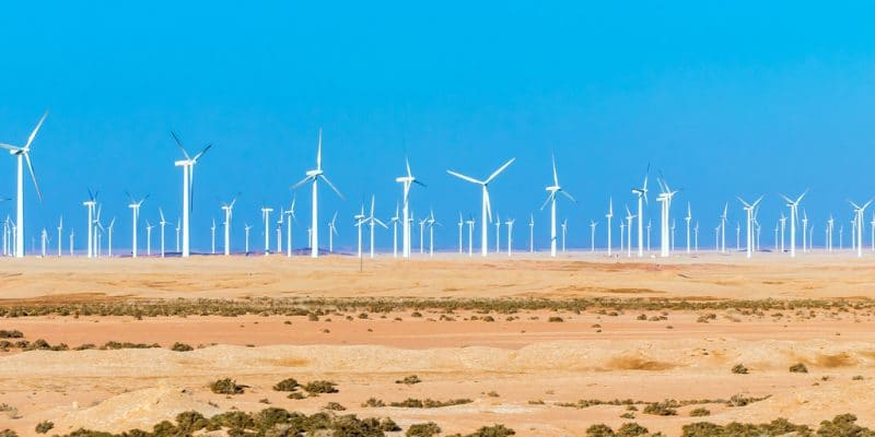 EGYPT: Zafarana 30 MW wind farm to be closed in 2021 after 20 years of op©Andrej Privizer / Shutterstockeration