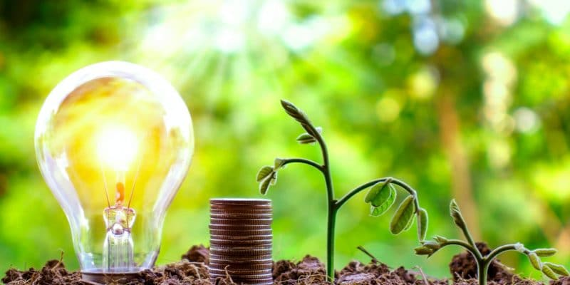 SOUTH AFRICA: GreenCape launches investment fund for green SMEs ©Arthon Meekodong/Shutterstock