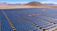 ÉGYPTE : TSK commence les essais de production dans la centrale solaire de Kom Ombo©abrien domundo/Shutterstock