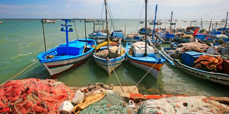 TUNISIA: MedFund releases €900,000 for improved marine protection©Eric Valenne geostory / Shutterstock