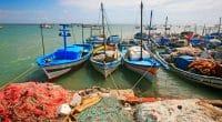 TUNISIE : MedFund débloque 900000 euros pour mieux gérer les aires marines protégées©Eric Valenne geostory/Shutterstock