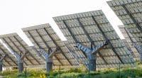MALI : exonération douanière sur les équipements d'énergies renouvelables©David Moreno Hernandez/Shutterstock
