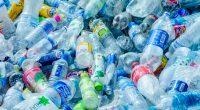 MALI : un appel à projets sur le recyclage des bouteilles en plastique est lancé©Gigira/Shutterstock