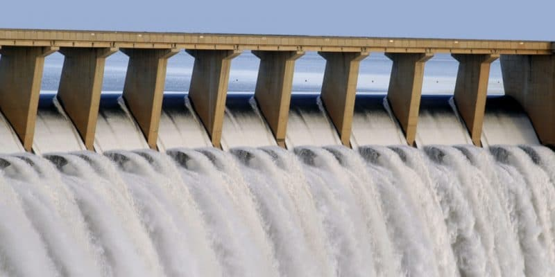 TANZANIA: Rufiji Dam infrastructure contract awarded to Elsewedy©Janice Adlam / Shutterstock