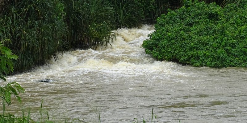 IVORY COAST: Themis gives the green light for the construction of the Singrobo Dam©Ivoire Hydro Energy