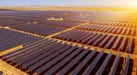 ZIMBABWE: ZETDC launches call for tenders on several solar power plants©Jenson/Shutterstock