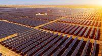 ZIMBABWE : ZETDC lance un appel d'offres pour plusieurs centrales solaires de 500 MWc ©Jenson/Shutterstock