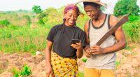 "AFRICA: GGGI and partners launch ""Greenpreneurs"" for green innovation© i_am_zews/Shutterstock"
