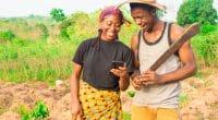 AFRIQUE : GGGI et ses partenaires lancent «Greenpreneurs» pour l'innovation verte ©i_am_zews/Shutterstock