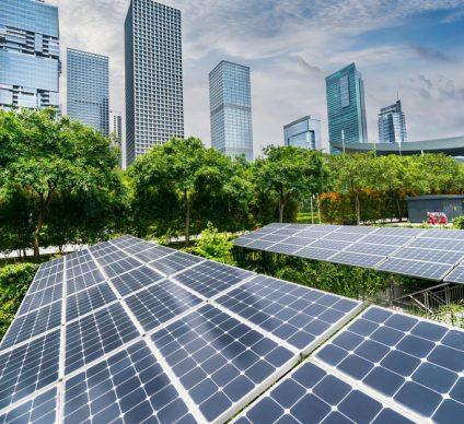 TUNISIA: WWF calls for post-Covid-19 period focused on green economy ©asharkyu/Shutterstock