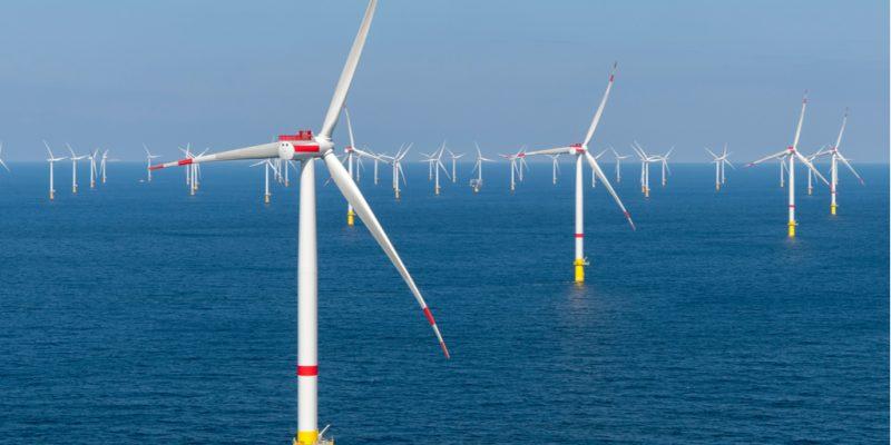AFRIQUE DU SUD : Hexicon et Genesis s'allient pour explorer l'éolien offshore© Tom Buysse/Shutterstock
