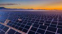 DJIBOUTI : le gouvernement approuve le projet solaire PV d'Engie à Grand Bara©abriendomundo/Shutterstock