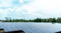 NIGIERIA: NSIA launches call for tenders on a 10 MW solar power plant in Kumbotso©cfalvarez/Shutterstock