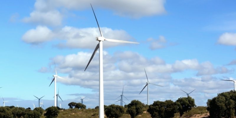 MOROCCO: World Bank report highlights wind energy potential©LukaKikina / Shutterstock