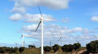 MAROC : un rapport de la Banque mondiale souligne le potentiel en matière d'éolienne©LukaKikina /Shutterstock